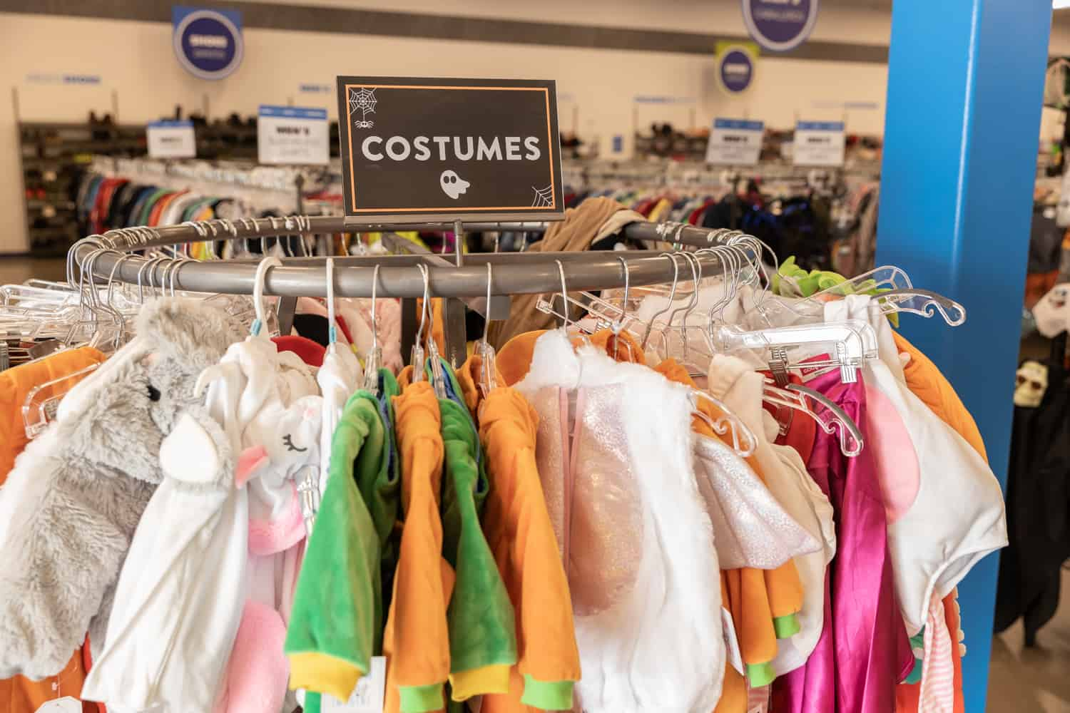 Budget-Friendly Halloween Costume and Decoration Ideas